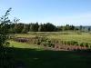 Herb Garden 3