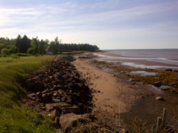 shoreline-at-low-tide